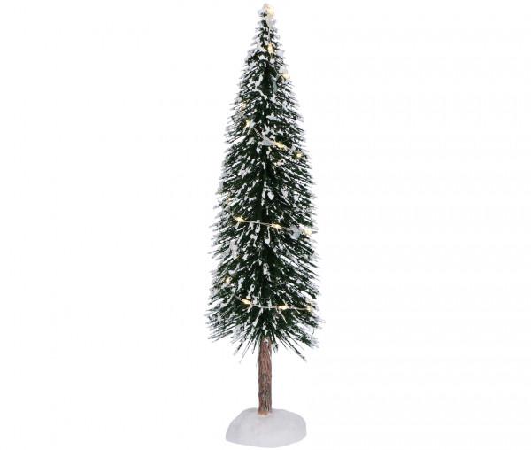 Tannenbaum mit Licht